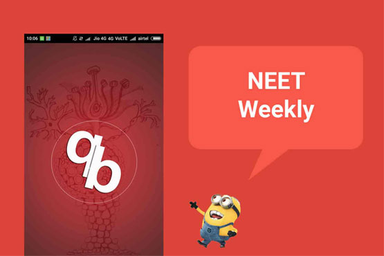 neet weekly - how it works