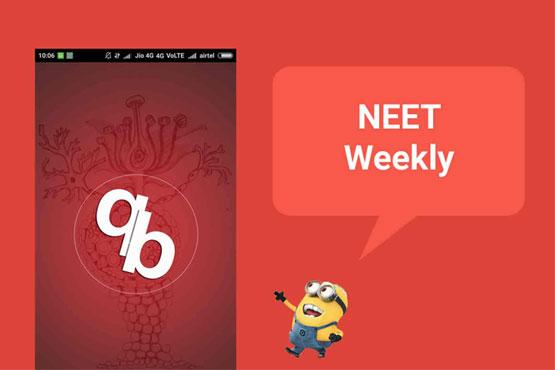 neet weekly - how it works